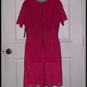 New York & Company Other - $12 NY&C Lace Hot Pink Romper